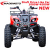 Electric 4 wheeler electric quad bike electric quad atv