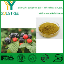 raspberry ketone extract 10:1,raspberry ketone weight loss pills