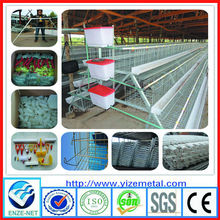 china manufacturer A-Type Multi-tier Chicken layer cage /90, 96. 120 chicken Layer Poultry Cage