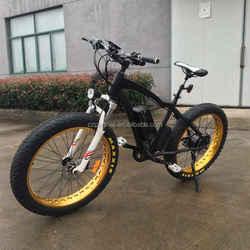2016 new product 750w electric bike bafang