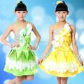 Chica trajes de danza vestido encantador para danza escenario mostrar trajes de hadas