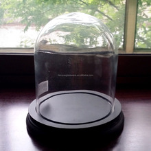 Mouth Blown Clear Glass Dome With Wooden Base