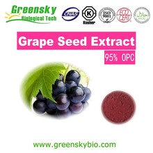 Good Price Good Solubiliy Grape Seed Extract( 95% PC/ OPC 60%),Antioxidant