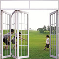 8 mm de doble cristal a prueba de sonido de aluminio plegable de la puerta puertas