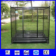 High Quality Wire Mesh Dog Fence