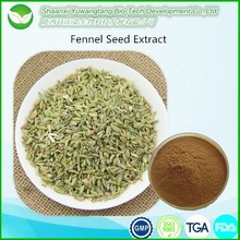 Manufacturer Supply powder Common Fennel Extract