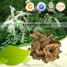 Factory Supply Top Quality Natural Herb Black Cohosh Treat Aphtha and Rectocele