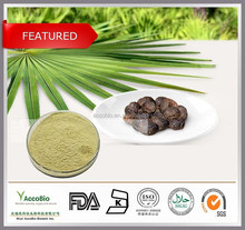Natural Hot sale Saw Palmetto Extract,High quality Rose Hips Extract powder