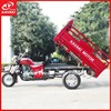 200cc multifunction water tricycle three wheel motorcycle/3 wheel motorcycle trikes