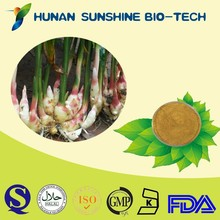 Factory Supply FREE SAMPLE 100% Natural Ginger Dry P.E.