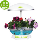 produto de alta tecnologia bonito quarto vaso de flor de mesa