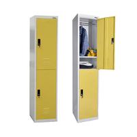 Professionall 20 Years Factory Metal Vertical Knock Down Clothes 2 Door Closet Locker