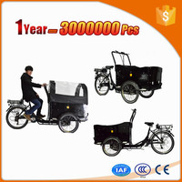Ebrighting brand exquisite cargo eec trike 3 wheel tricycle made in china