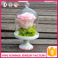 preserved dried flower handmade crafts / dried flower in glass / flower souvenirs B045