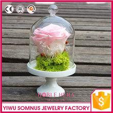 Conservado flores secas artes hechos a mano / de flores secas en vidrio / recuerdos B045