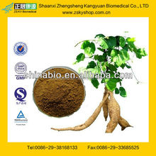 GMP Certified Manufacturer Supply Pueraria Lobata Extract