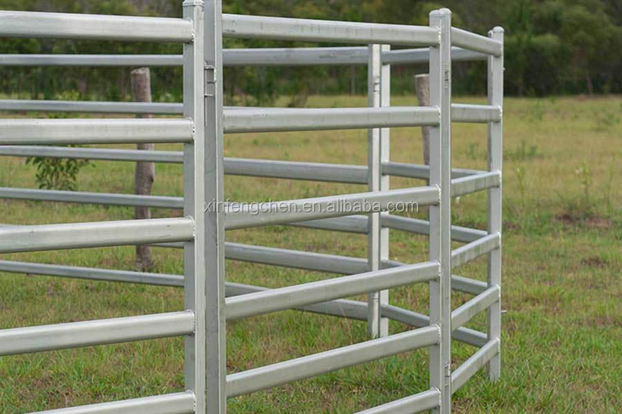 horse-panels.jpg