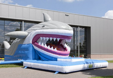 2015 hot small inflatable shark jumper toys for kids