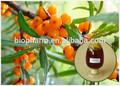 Espino cerval de mar extracto de vitamina e 180mg/100g del fabricante de china