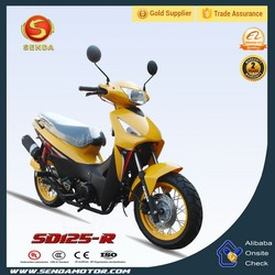 Mini New China Gas Motorcycle for Sale SD125GY-R