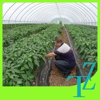 High quality uv resistant ground cover agriculture plastic mulching film