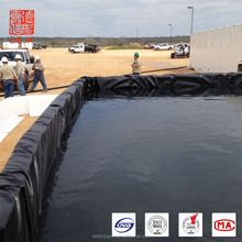 Peces de estanque liner acuicultura tanques