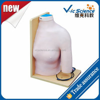 Shoulder Joint Intracavitary Injection Model