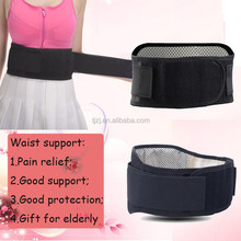 Magnetic health lumbar support