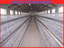 agricultural equipment folding steel wire mesh bird cage/bird cage wire mesh/cheap chinese bird cage