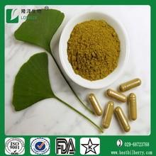 Bulk Supply ISO and Kosher certified organic ginko biloba herbal extract 26+6 type