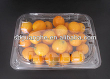new design PET fruit tray for supermarket