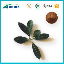 pure natural herbal Kosher Halal FDA registered yerba mate extract