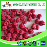 Freeze dried berries Raspberry rubus corchorifolius Freeze dried fruits and vegetables