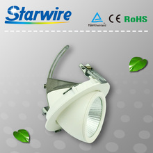 30W LED Downlight / LED Gimable / trunk light 9W 12W 20W 30W Meanwell dimmable driver