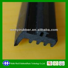 professional solid/sponge window rubber seal