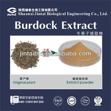 natrual plant extract arctiin in burdock root extract