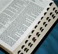 Modificado para requisitos particulares alta calidad venta al por mayor santa biblia