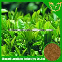 Terrific Quality ! Buying green tea extract tea polyphenols powder is A Smart Move ! ! ! Hot Stuff ! ! !