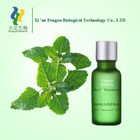 Peppermint Oil Prices,Top quality BP/ USP Grade Peppermint Essential Oil