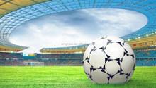 Economical ISO Certification Indoor Outdoor Soccer Artificial Turf (ASR-50D)