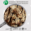 Angelica Extract dong quai extract