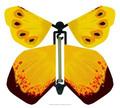 faveurs de mariage papillons en papier magique