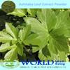 100% Natural Angelica Keiskei Extract/Ashitaba Extract Powder/Ashitaba Powder Capsule
