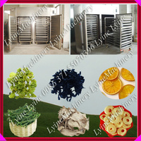industrial vegetable fruit dryer machines for sale
