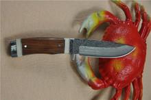 Custom Made Damascus Steel hunting Knife FLDL-WG0015