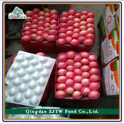 Hot Sale Best Price Import Apple Fruit