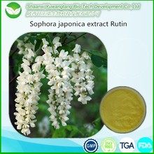 Pure natural Quercetin Powder Sophora japonica extract