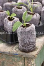 Coir Peat Plugs with non woven bags / Coir Disc in India