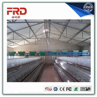 Professional plastic chicken cage with CE certificate