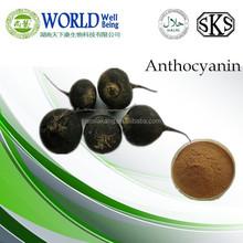 Top Quality Black Radish Root Extract, Black Radish extract